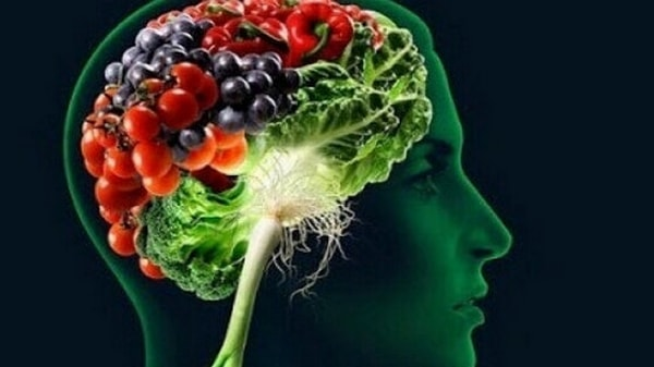 10 aliments qui favorisent la mémoire et la concentration