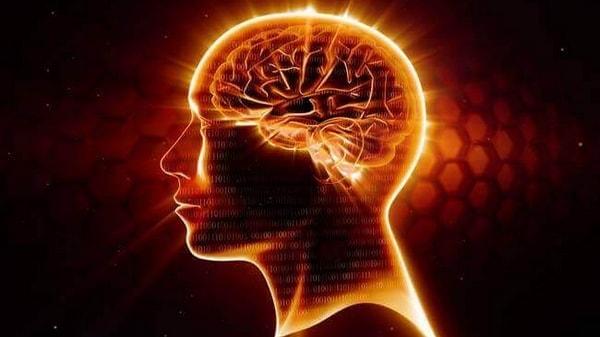 Oméga-3, intelligence et cognition chez les personnes âgées