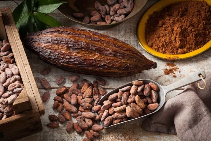 Graines de cacao, riches en antioxydants