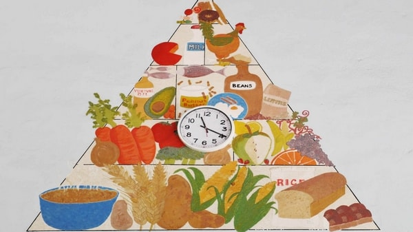 Les grandes familles d'aliments